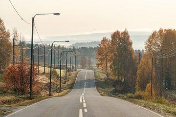 Lege weg door herfst landschap. van Axel Weidner