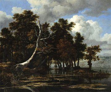 Jacob van Ruisdael. Eichen an einem See mit Wasserlilien von 1000 Schilderijen
