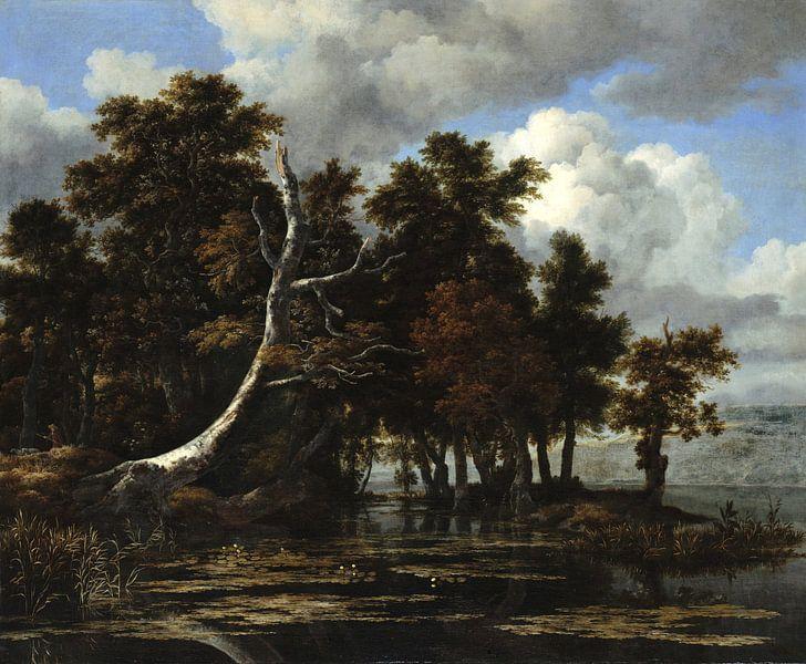 Jacob van Ruisdael. Eiken bij een meer met waterlelies van 1000 Schilderijen