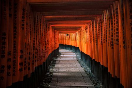 Torii of Fushimi Inari Taisha von Maarten Mensink