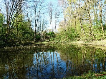 Natuur weerspiegeling water sur Nicole Maessen