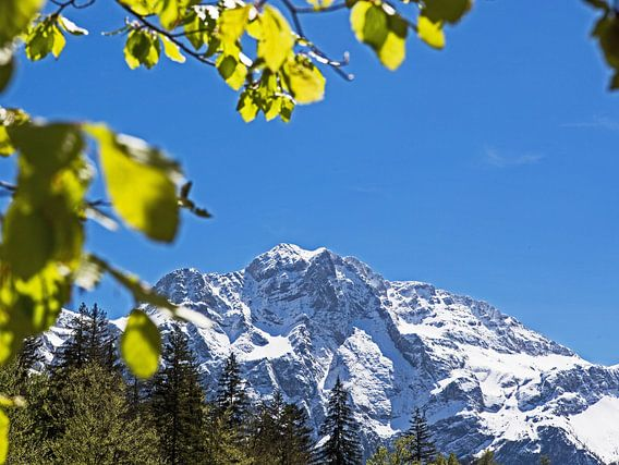 Strahlender Berggipfel