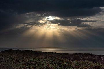 Zonnestralen von Jeanette van Starkenburg