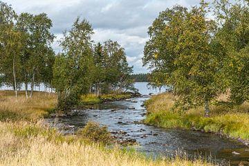 River in Schweden Nr. 4 von Geertjan Plooijer
