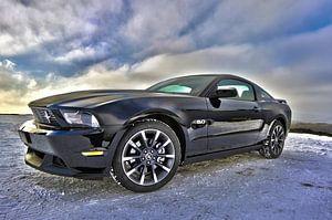 Ford Mustang in zwart van Natasja Tollenaar