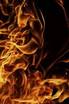 Brand en vlammen van Tanja Riedel