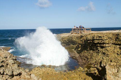 Curacao, ruige kust no. 12