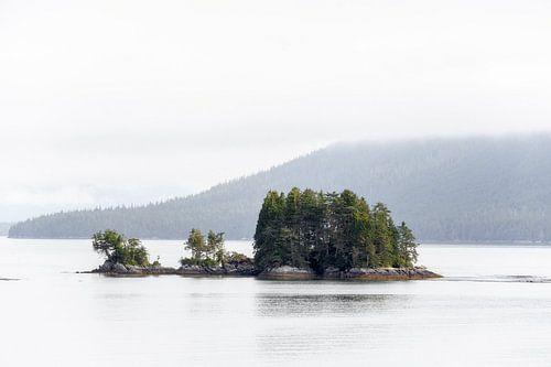 De wildernis van British Columbia van