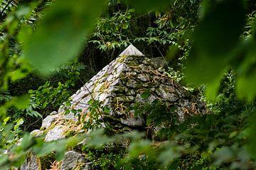 Piramide van Tony Buijse