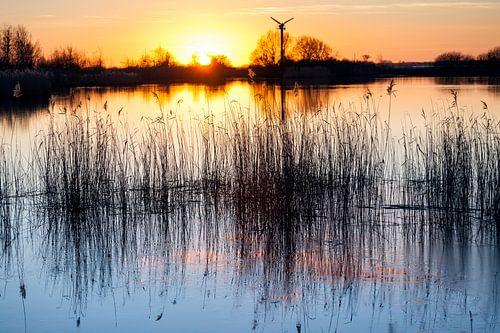 Zonsondergang boven het Lauwersmeer bij Lauwersoog