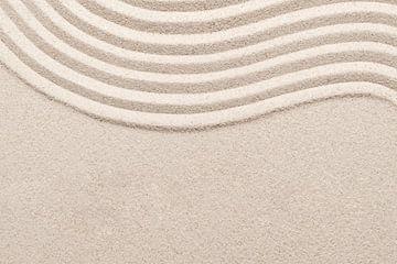 Sandwelle von Rudy & Gisela Schlechter