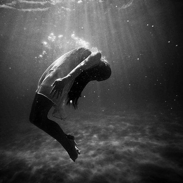 Onderwater van Laurance Didden