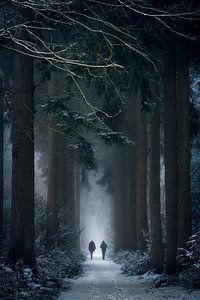 Come With Me. van Inge Bovens