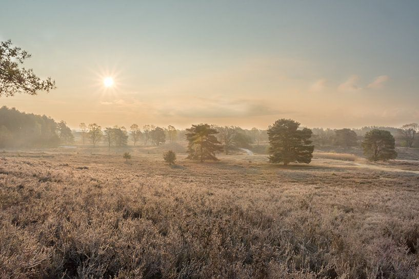 Sonnenaufgang Brunssummerheide von John van de Gazelle