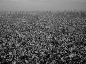 Vogelvluchtperspectief op Tokyo, Japan van Frank den Hond