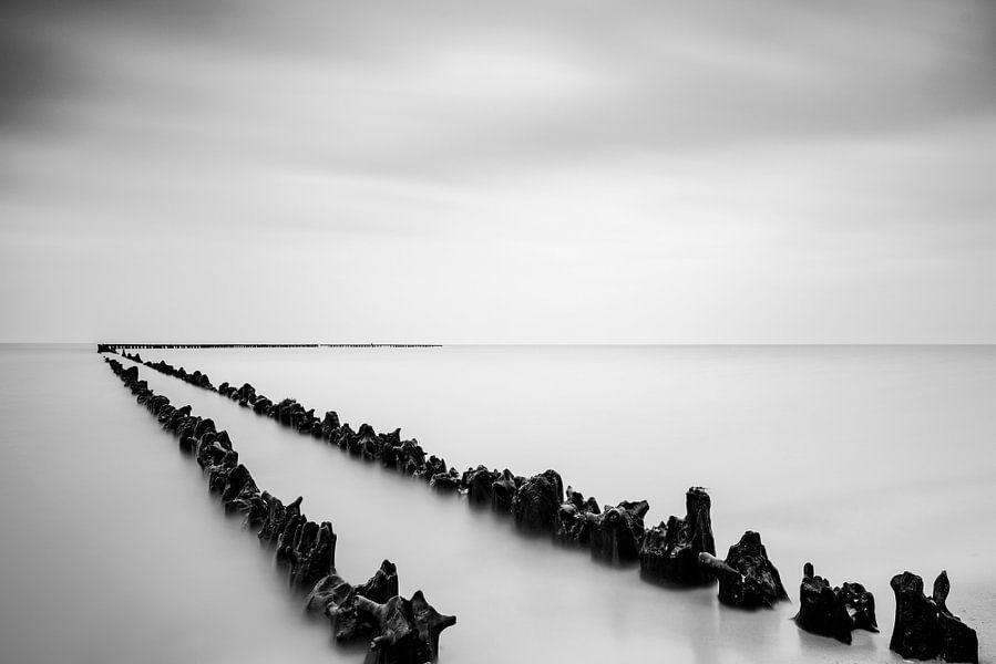 Palen in het water van het IJsselmeer in zwart wit