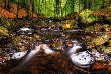 enchanted brook van