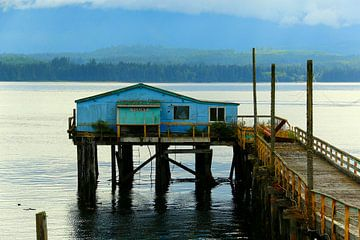 Alert Bay - Vancouver Island von Lynxs Photography