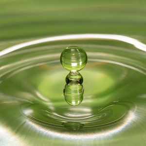 Als twee druppels water van
