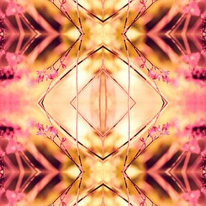 PINK SPANGLES no9-R1