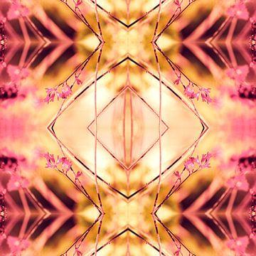 PINK SPANGLES no9-R1 van