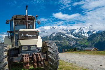Lambo Traktor von Atelier Liesjes