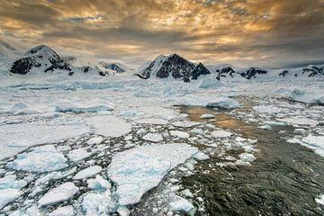 Sonnenuntergang Wilhelmina-Bucht, Antarktis, Eisscholle. von Ron van der Stappen