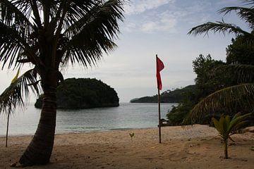 Privéstrand bountyeiland - Mababoy, Bihol, Filipijnen van Stefan Speelberg