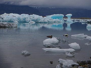 Jokulsarlon glacier lagoon on Iceland sur Wilco Berga