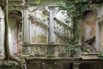Verlassenes Treppenhaus mit großem Baum in. von Kristof Ven