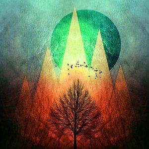 TREES under MAGIC MOUNTAINS II