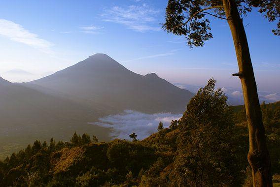 Dieng Plateau, Java van Sven Wildschut