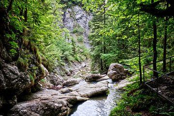 Randonnée dans l'Allgäu sur Roith Fotografie