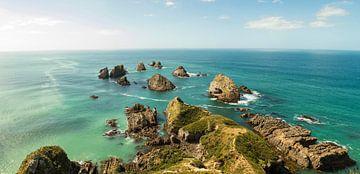 Nugget Point Neuseeland von Anne Vermeer