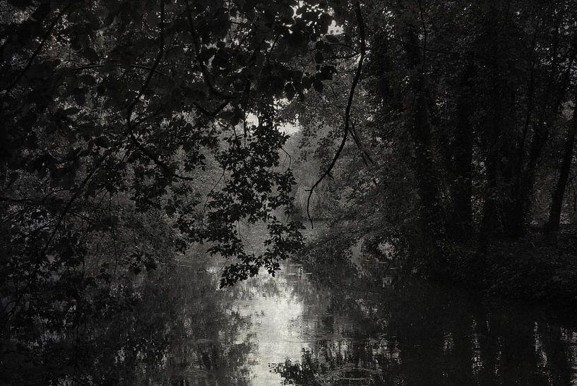 Dark waters van Jenny de Groot