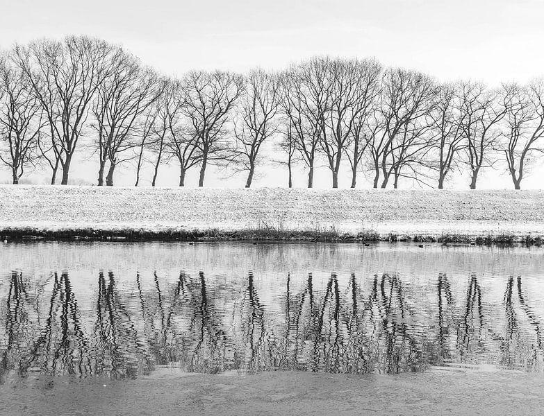 Sneeuw van Roy Vrinten