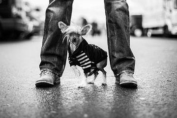 Stoere man met kleine hond van Mirjam van den Berg