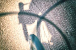 Wielrenner sport art van Rene du Chatenier
