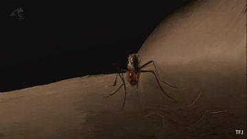 mosquito van Theunis Kuipers