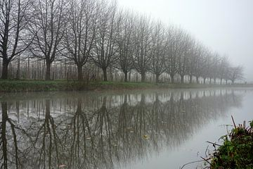 Winterse reflectie in de Kromme Rijn van