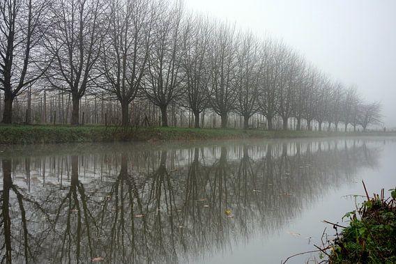 Winterse reflectie in de Kromme Rijn