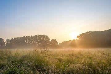 Mombeekvallei zonsopkomst van Johan Vanbockryck