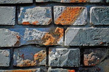 Die Mauer |  De Muur von Dieter Ludorf