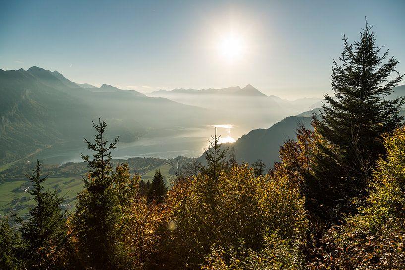 Herfst in de Zwitserse Alpen. Berner Oberland. van Hidde Hageman