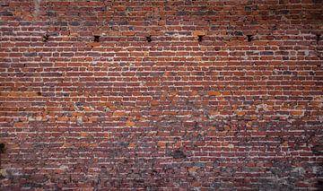 Baksteen oude muur Fotobehang  1
