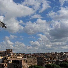 meeuw boven Rome. van Tilly Meijer