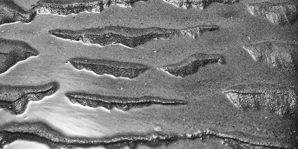 Strand in zwart-wit