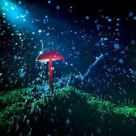 Spetterend bos landschap met paddenstoel van Fotografiecor .nl