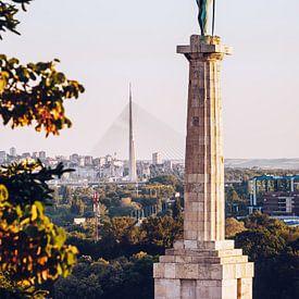 Belgrade - Pobednik sur Alexander Voss