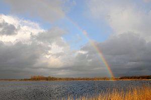 Regenboog boven Botshol